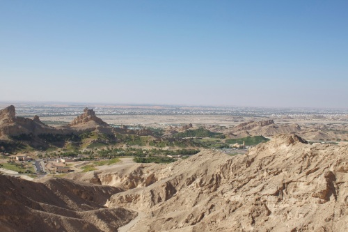 Looking over the Al Ain Oases. Al Ain also has a truly world class zoo.