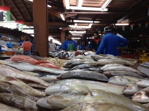 The fish market in Sharjah**