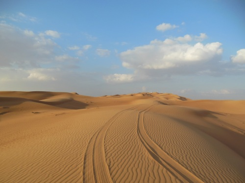 """""""Dune Basing."""" Let your tires down to 15psi, and make some tracks."""