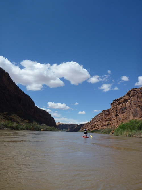 While a road parallels the Colorado River the length of our ten-mile paddle, the trip was still very calming.  I'll be honest- I went through our lone rapids and a couple of the choppy fast-water sections firmly on my knees.