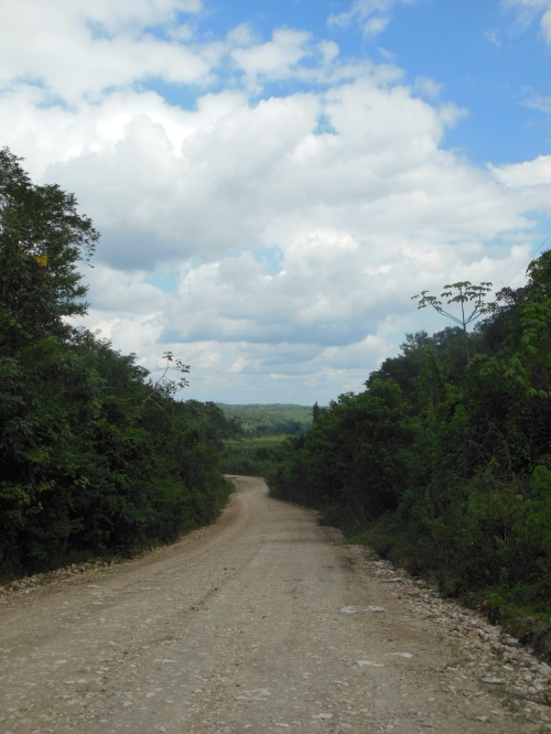 The roads in Belize often leave a lot to be desired.  A good 4X4 vehicle is frequently needed!