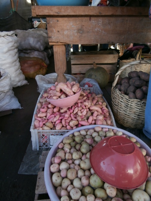 Potatoes are frequently served for lunch and dinner. They're a traditional crop, and there are varieties that  grow in the harsh Andes climate. They look quite a bit different to what you get in the store in the US!