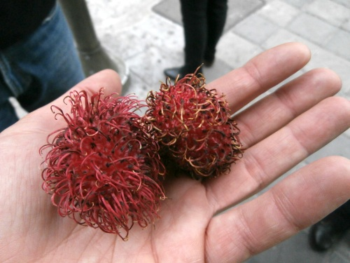 Rambutans- A curious looking fruit!
